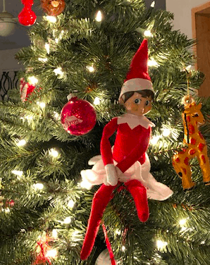 That Damn Elf on the Shelf – (or: Our Transgender Shelf Elf)